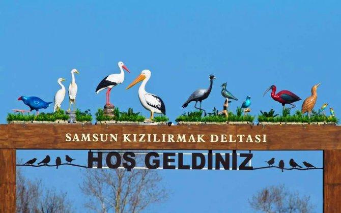 Samsun Kuş Cenneti Markalaşıyor